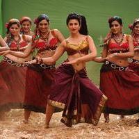 Selvanthan Movie New Stills | Picture 1086416