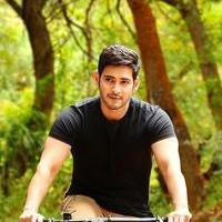 Mahesh Babu - Selvanthan Movie New Stills | Picture 1086427