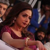Sridevi (Actress) - Puli Audio Launch Stills | Picture 1087117