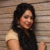 Ramya (Anchor) - Selvandhan Movie Audio Launch Stills | Picture 1087294