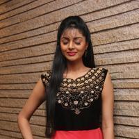 Sanam Shetty - Selvandhan Movie Audio Launch Stills | Picture 1087301