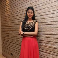 Sanam Shetty - Selvandhan Movie Audio Launch Stills | Picture 1087303