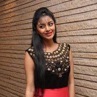 Sanam Shetty - Selvandhan Movie Audio Launch Stills | Picture 1087304