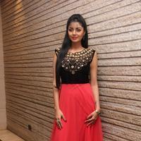 Sanam Shetty - Selvandhan Movie Audio Launch Stills | Picture 1087305