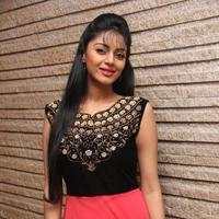 Sanam Shetty - Selvandhan Movie Audio Launch Stills | Picture 1087306