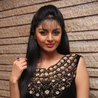 Sanam Shetty - Selvandhan Movie Audio Launch Stills | Picture 1087307