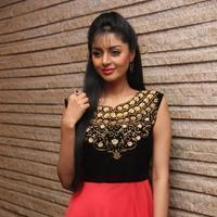 Sanam Shetty - Selvandhan Movie Audio Launch Stills | Picture 1087308