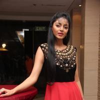 Sanam Shetty - Selvandhan Movie Audio Launch Stills | Picture 1087312