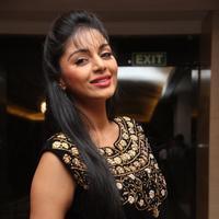 Sanam Shetty - Selvandhan Movie Audio Launch Stills | Picture 1087315