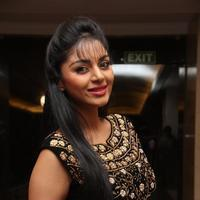 Sanam Shetty - Selvandhan Movie Audio Launch Stills | Picture 1087316