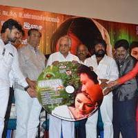 Baanu Movie Audio Launch Stills | Picture 1088946