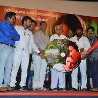 Baanu Movie Audio Launch Stills | Picture 1088949