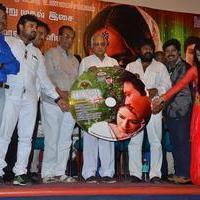 Baanu Movie Audio Launch Stills | Picture 1088952
