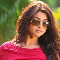 Akanksha Puri - Thigar Movie New Stills