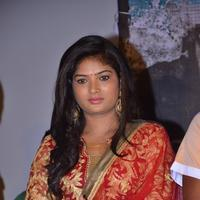 Swetha Tamil - Virudhachalam Movie Audio Launch Photos | Picture 1091959