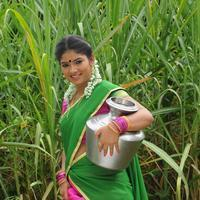 Swetha Tamil - Virudhachalam Movie Stills   Picture 1091938