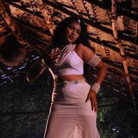 Sameera New - Virudhachalam Movie Stills   Picture 1091941