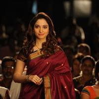 Tamanna Bhatia - Vasuvum Saravananum Onna Padichavanga Movie Latest Stills