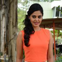 Bindu Madhavi - Tamizhukku En Ondrai Azhuthavum Movie Press Meet Stills