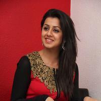 Nikki Galrani - Darling Movie Press Meet Photos