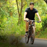 Mahesh Babu - Selvandhan Movie Gallery | Picture 1074468