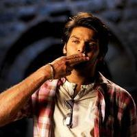 Arya (Actors) - Vasuvum Saravananum Onna Padichavanga Movie Stills | Picture 1080242