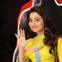Tamanna Bhatia - Vasuvum Saravananum Onna Padichavanga Movie Stills