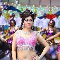 Sadha - Eli Movie Stills   Picture 1045630
