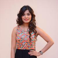 Sanchita Shetty - Uttama Villain Movie Audio Launch Photos
