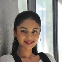 Sanam Shetty - Katham Katham Movie Press Show Stills
