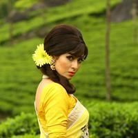 Sadha - Eli Movie Stills   Picture 1033106