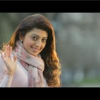 Pranitha - Masss Movie New Stills