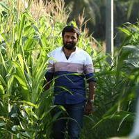 M Sasikumar - Vetrivel Movie Stills
