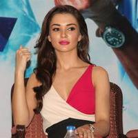 Amy Jackson - Theri Movie Press Meet Stills