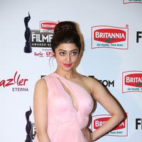 Pranitha - 63rd Filmfare Awards Event Stills