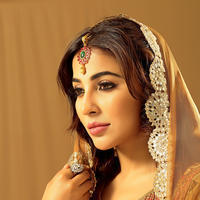 Parvathy Nair Latest Stills