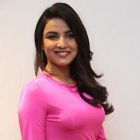 Jasmine Bhasin at Ladies and Gentleman Movie Audio Launch Photos