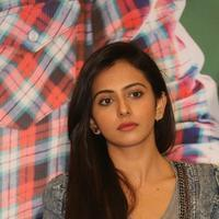Rakul Preet Singh - Rough Movie Success Meet Stills