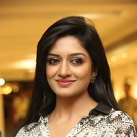 Vimala Raman - Solo art Show to Support Pratyusha Foundation Photos