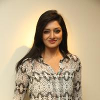 Vimala Raman at Solo art Show to Support Pratyusha Foundation Stills