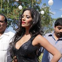 Poonam Pandey - Malini and Co Movie Press Meet Stills | Picture 922996