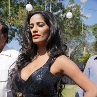 Poonam Pandey - Malini and Co Movie Press Meet Stills | Picture 922998