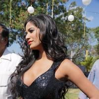 Poonam Pandey - Malini and Co Movie Press Meet Stills | Picture 922999