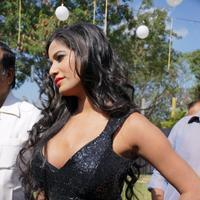 Poonam Pandey - Malini and Co Movie Press Meet Stills | Picture 923000