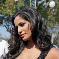 Poonam Pandey - Malini and Co Movie Press Meet Stills | Picture 923001