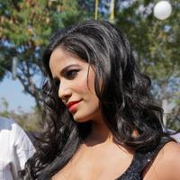 Poonam Pandey - Malini and Co Movie Press Meet Stills | Picture 923002