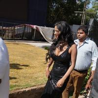 Poonam Pandey - Malini and Co Movie Press Meet Stills | Picture 923011