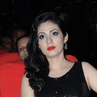 Sadha - Yamaleela 2 Movie Audio Launch Photos