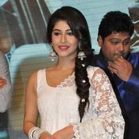Sonarika Bhadoria - Jadoogadu Movie Audio Launch Stills