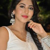Sonarika Bhadoria at Jadoogadu Audio Launch Photos